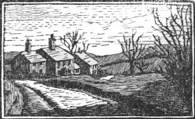 small wood-engraving of Row of Country Cottages